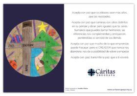 Tarjeta Caritas 2017